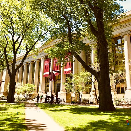 Normalização [Harvard] - TCC sem Medo